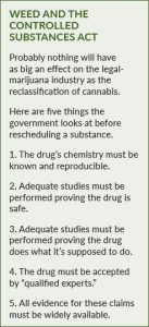 Classification of cannabis as a controlled substance