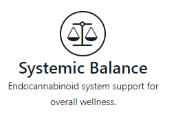 systematic balance