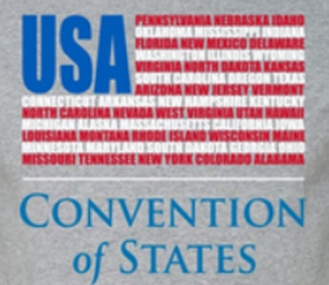 Convention of States flag USA