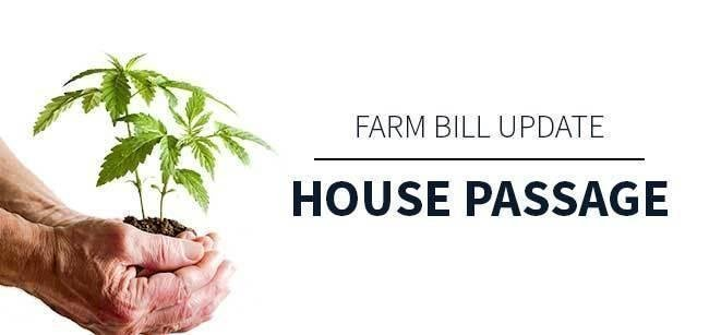 farm Bill update 2019